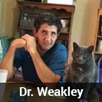 dr_weakley
