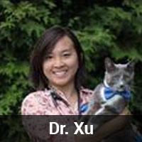 dr_xu